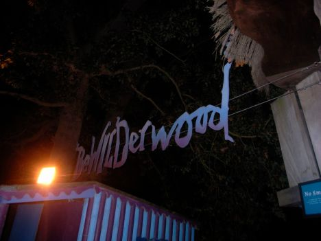 BeWILDerwood at night