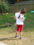 and a young guest looks eye to eye with a bird in training at Puy du Fou