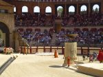 At the start of the roman show at Puy du Fou, they parade in with ducks, emu's, camels and pigs. As you do at Puy du Fou