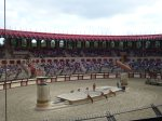 Some lions come in and look menacing at Puy du Fou