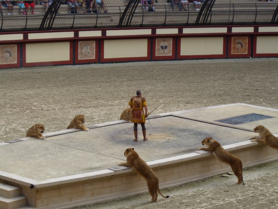 With one lion tamer looking like bait at Puy du Fou