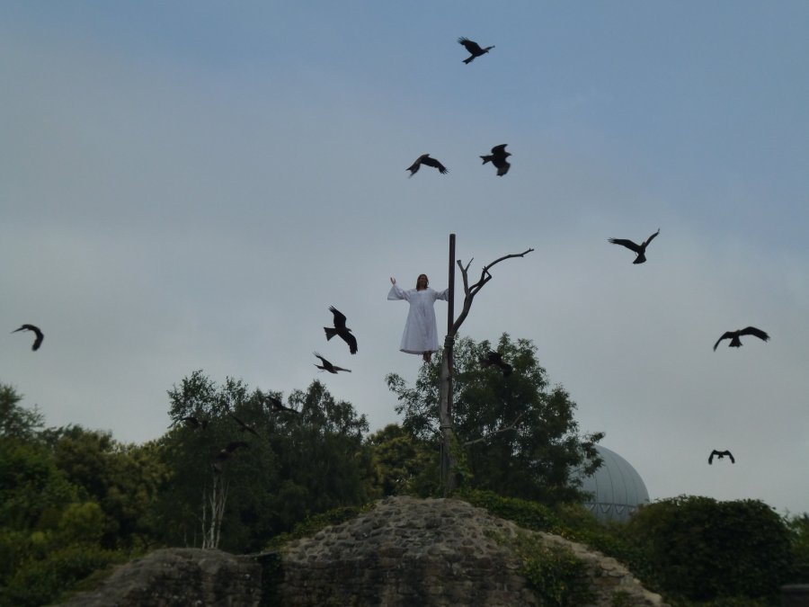 You don't see this everyday, but a lady levitates and is surrounded by over 170 giant birds at Puy du Fou
